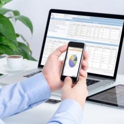 Summit Business Systems FMAnywhere Web Portal